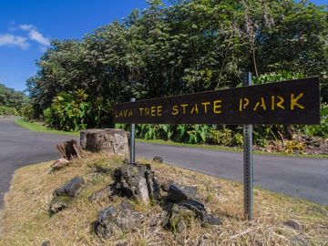 Puna Real Estate 12 Puna Homes For Sale 12