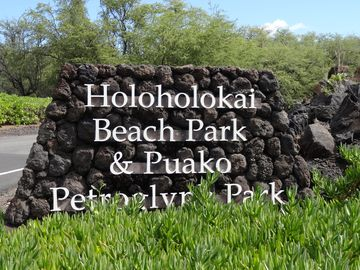 Mauna Lani Resort Real Estate 6 Mauna Lani Resort Homes For Sale 6