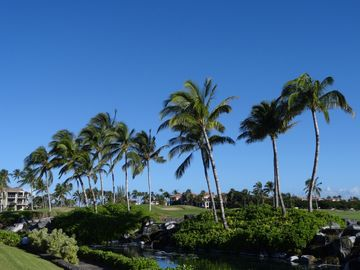 Waikoloa Beach Resort Real Estate 2 Waikoloa Beach Resort Homes For Sale 2